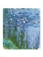 Waterlilies (blue & green vertical) Fine-Art Print