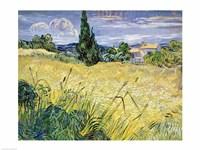 Landscape with Green Corn, 1889 Fine-Art Print