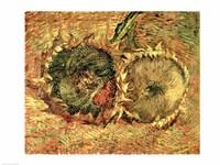 Two Cut Sunflowers, 1887 Fine-Art Print