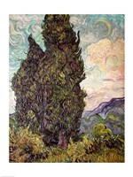 Cypresses, 1889 Fine-Art Print
