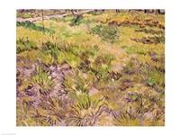 Meadow with Butterflies, 1890 Fine-Art Print