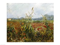 Corn Fields and Poppies, 1888 Fine-Art Print