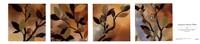 Sundown Bronze Petites Fine-Art Print