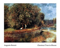 Chestnut Tree in Bloom Fine-Art Print