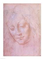 Head of a woman Fine-Art Print