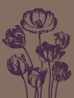 Tulip 14 Fine-Art Print