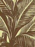 Leaf 4 Fine-Art Print