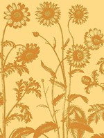 Chrysanthemum 19 Fine-Art Print