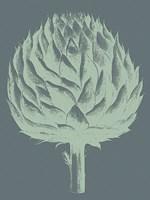 Artichoke 7 Fine-Art Print