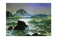Seal Rock Fine-Art Print