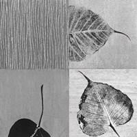 Leaf Quad Fine-Art Print