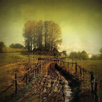 Another Place Fine-Art Print