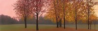 Autumn Dawn, Maples Fine-Art Print