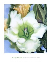 Cup of Silver Ginger, 1939 Fine-Art Print