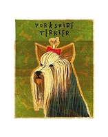 Yorkshire Terrier Fine-Art Print