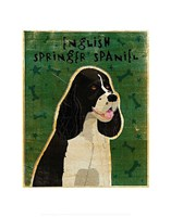 English Springer Spaniel (black and white) Fine-Art Print