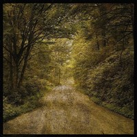 Flannery Fork Road No. 1 Fine-Art Print