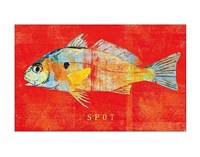 Spot Fine-Art Print