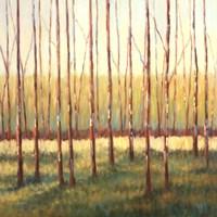 Grove of Trees Fine-Art Print