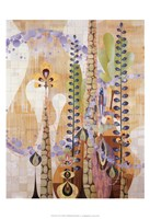 Sticta Fine-Art Print