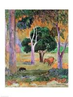 Dominican Landscape Fine-Art Print