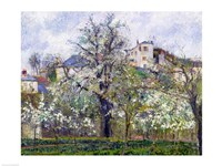 The Vegetable Garden with Trees in Blossom, Spring, Pontoise, 1877 Fine-Art Print