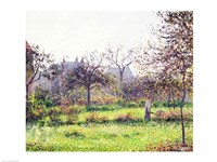Morning Sun, Autumn, Eragny, 1897 Fine-Art Print