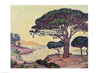 Umbrella Pines at Caroubiers, 1898 Fine-Art Print