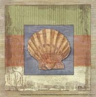 Montego Scallop- petite Fine-Art Print