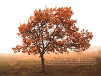 Silent Oak Fine-Art Print
