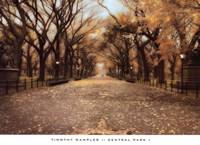 Central Park I Fine-Art Print