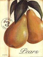 Organic Pears Fine-Art Print