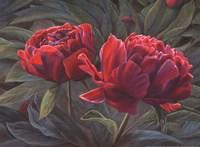 Flowers II Fine-Art Print