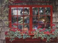 Window with Flowers I Fine-Art Print