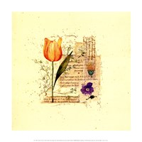 Flower Notes with Orange Tulip Fine-Art Print