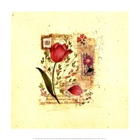 Flower Notes with Purple Tulip Fine-Art Print