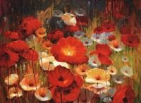 Meadow Poppies I Fine-Art Print