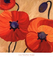Oriental Poppy L Fine-Art Print
