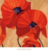 Oriental Poppy R Fine-Art Print