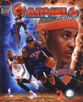 Carmelo Anthony 2011 Portrait Plus Fine-Art Print