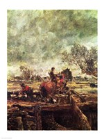 Study for The Leaping Horse Fine-Art Print
