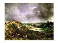 Hampstead Heath Fine-Art Print