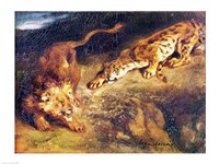 Tiger and Lion Fine-Art Print