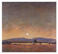 Arizona Cottonwood Fine-Art Print
