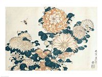 Chrysanthemums Fine-Art Print