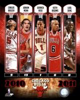 Chicago Bulls Team Comp 2010-11 Fine-Art Print