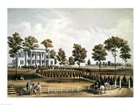 The Hermitage Fine-Art Print