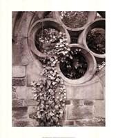 Secret Garden I Fine-Art Print