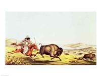 Hunting the Buffalo Fine-Art Print