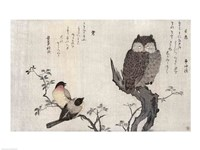 An Owl and two Eastern Bullfinches Fine-Art Print